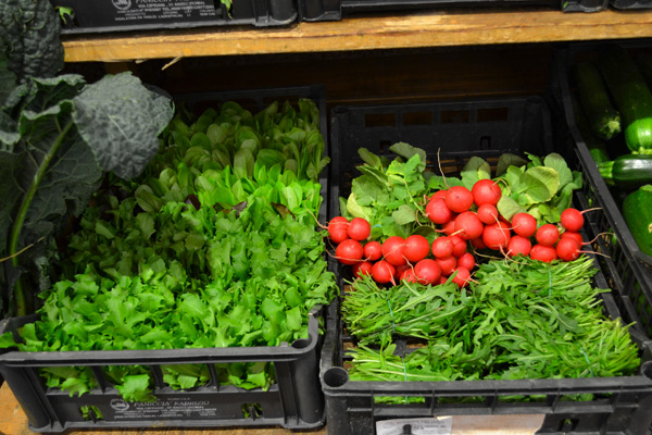 preparazione insalate e pulizia verdure