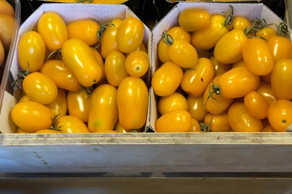verdura a domicilio Roma