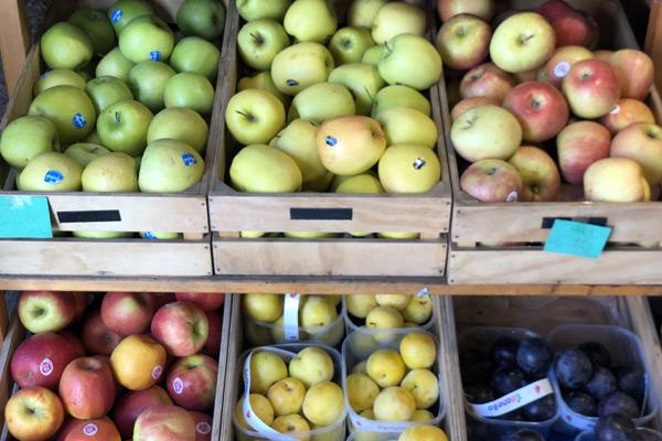 Frutta e verdura a Domicilio Roma