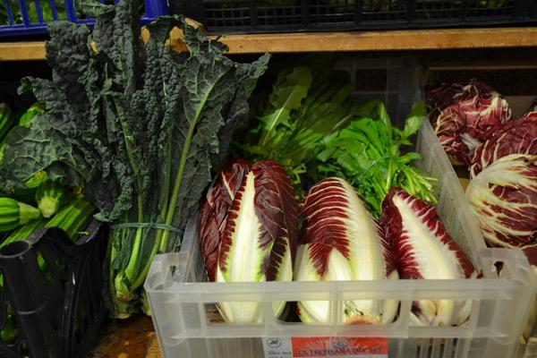preparazione insalate