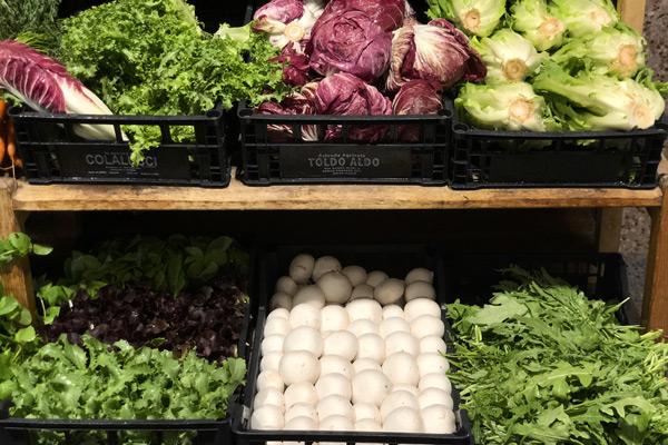 fornitura Frutta e verdura fresca